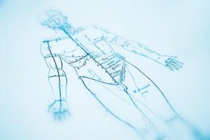 Eugene acupuncturist